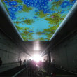 東京外環の松戸インター開通プレイベントへ