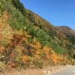 恒例の秋の四国カルスト
