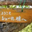 2018年6月17日 六甲で穂高と槍の縦走?!