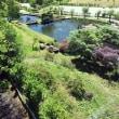 山梨温泉・フレンチ・蕎麦…そしてお花⑥花の森公園