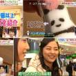 日本テレビ系列<ズームイン!!サタデー>とパンダソルト