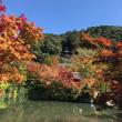 秋晴れの京都 疎水と哲学の道へ行ってきました。