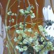 青文字の花