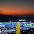 東京ドイツ村のライトアップと横浜ベイブリッジの富士山