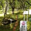 入笠山−鹿嶺高原トレッキングコース一部
