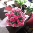 母の日のカーネション届きました。今年はピンク