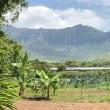 Mouna Farm Arts and Culture Village