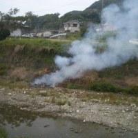 川の草焼き