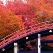 紅葉への思い-和歌山県かつらぎ町:丹生都比売神社