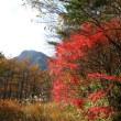 榛名山麓の紅葉も終盤 H-29-11-13
