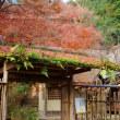 晩秋京都:嵐山宝厳院