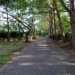 8/20(日)、寺ケ公園 ・朝と夕 !!