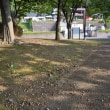 本牧神社・新本牧公園、日曜日の朝 ぶらぶら♪
