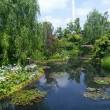 デパートのモネの池