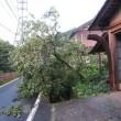 台風18号の被害
