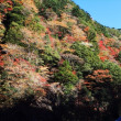 八幡峠の紅葉2017