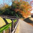 「えごま」の美里町から鉢形城~半日ドライブ