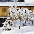 桃源郷もすっぽり雪の中