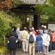 軽井沢のいろいろ 軽井沢の 「 観光ガイドさん 」