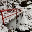 第47回 堺 登山・ハイキング例会 三峰山(1235m)