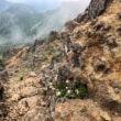 真教寺尾根で、赤岳へ