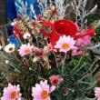 春の寄せ植えたちと春の庭
