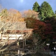 コントラストが綺麗な百済寺