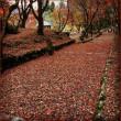 びわ湖テラス ☆ 鶏足寺