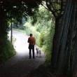 アズキの祖先に出会った<秋のお散歩1>