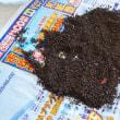 お掃除の生活習慣 その5:コーヒー豆殻の脱臭剤