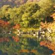 京都の紅葉🍁