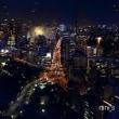東京タワー 天の川イルミネーション