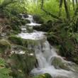 磐梯スカイラインと五色沼の散歩