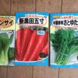 ジャガイモの植え付け&春菊を播種したYO(*^^)v