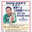ドッグデプト静岡店に松本君がやってくる!