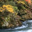 横川渓谷への道 2