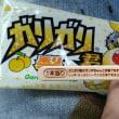 資材購入とガリガリ君当り!(*´∀`)