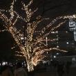 銀杏並木から新宿まで