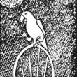 日記(6.24)米ゴリラ財団のココ