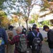 たかつき市民環境大学 阿武山地域の公園、街路樹を巡る