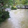 地蔵川も濁ってました