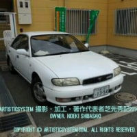 カスタムブル洗車フルセット!2014/09/19編!