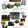保育活動☆8月後半-2