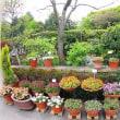 第3回フラリエみらい花フェスタ『メインガーデン・ガーデンコンテスト作品」【4/12~4/22展示中】