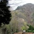 遠見山(若桜神社から)