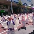 ★第15回湘南よさこい祭り開催!
