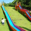 島田市中央公園🏞️