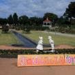 敷島公園 秋バラ2017