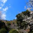 『梅たより』 高来神社