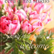 春分の日&満月「オーラソーマと色彩心理」ワンデイ講座